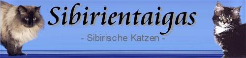 Banner_Sibirientaigas